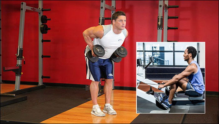 Seated Cable Row vs. Bent-Over Barbell Row