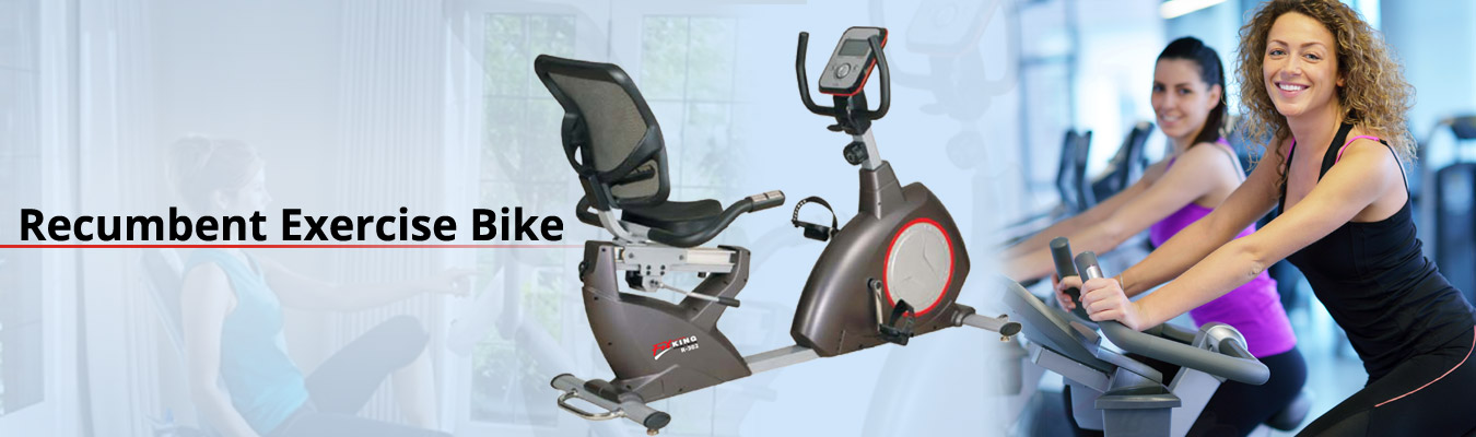 recumbent exercise bike brand india