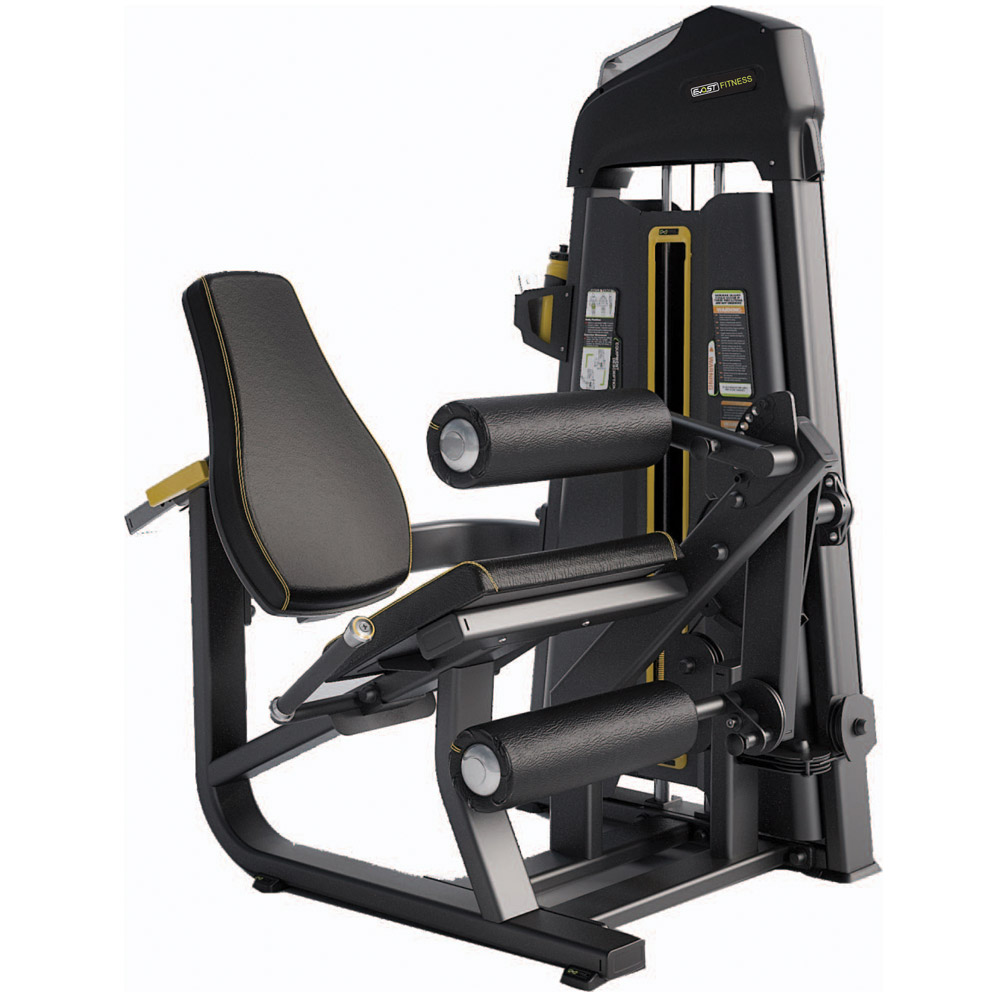 Leg Extension / Leg Curl E - 1076