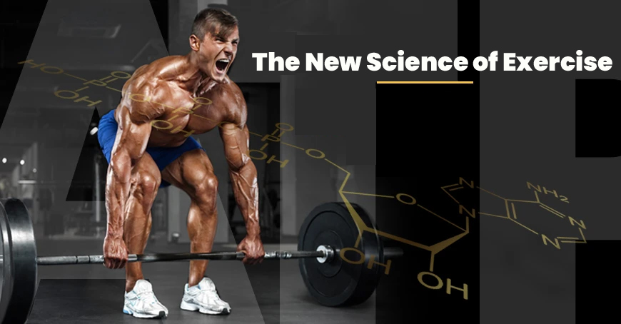 The New Science of Exercise